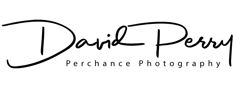 Perchance Photography Logo